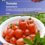523566-Tomate--Gardenberry
